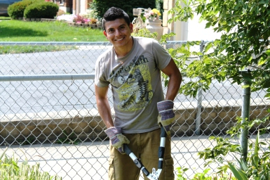 Shrub pruning