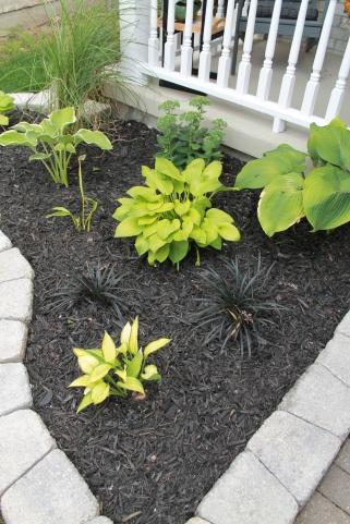 Garden bed design with black mulch