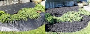 Garden bed mulch application