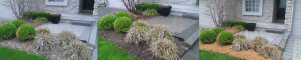 Garden bed clean-up and mulch application